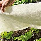 Frostschutzvlies Schafwolle