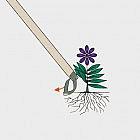 Universal-Flachschneider Storch, Edelstahl