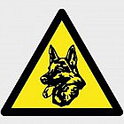 Elektronischer Wachhund mit Mikrowellen-Sensor